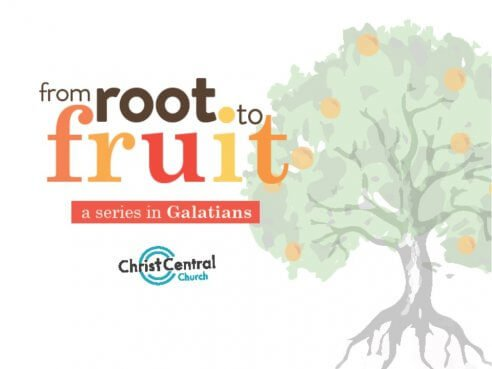 From Root to Fruit
