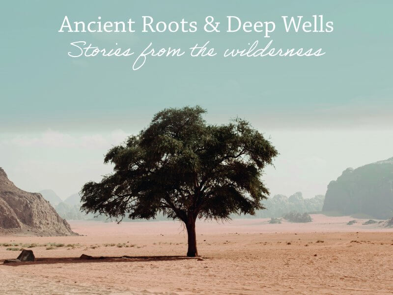 Ancient Roots, Deep Wells